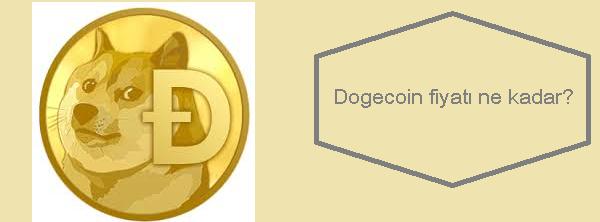 dogecoin fiyatı