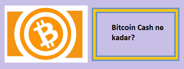 bitcoin cash ne kadar